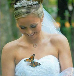 Mariposas a la salida de los novios salida_mariposas_2_290x300