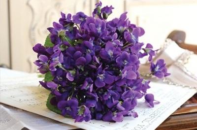 UN RAMITO DE VIOLETAS violetas_12_