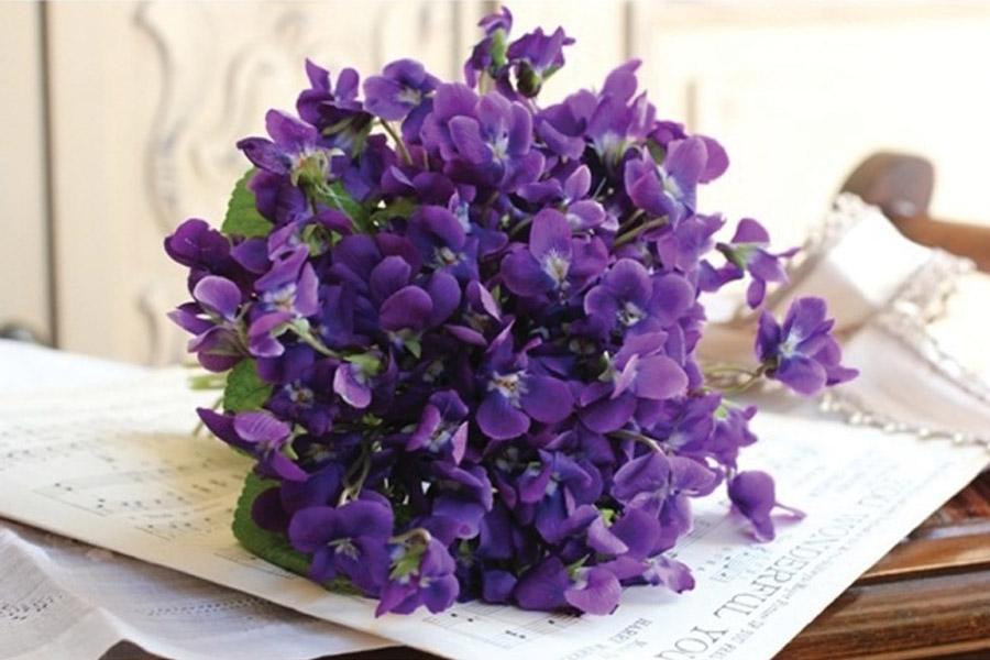 UN RAMITO DE VIOLETAS violetas_2_900x600