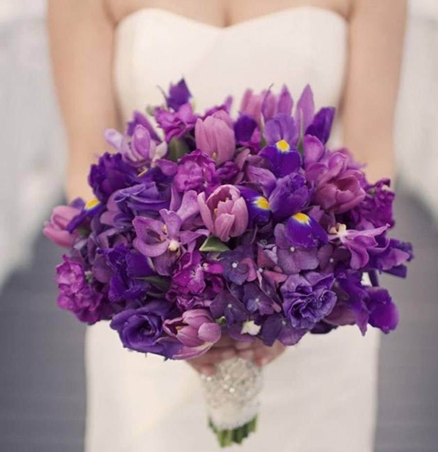 UN RAMITO DE VIOLETAS violetas_4_900x930