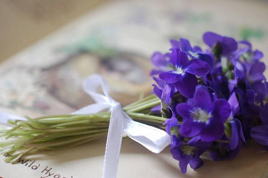Un Ramito De Violetas Blog De Bodas De Una Boda Original