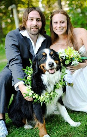 Tu mascota, el primer invitado a tu boda mascota_8_290x4561