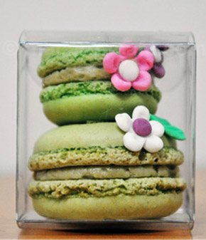 Macarons, un regalo muy chic macarons_6_290x337