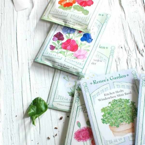 DIY: semillas para tus invitados semillas_3_600x600