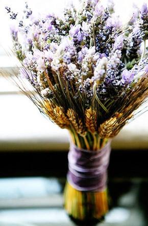 Bouquets de lavanda lavanda_3_290x442
