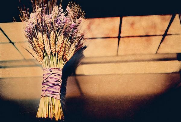Bouquets de lavanda lavanda_7_600x405