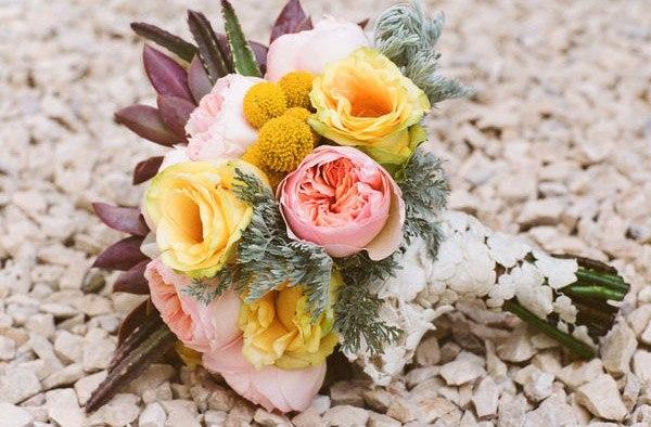 La flor que Romeo regaló a Julieta juliet_roses_12_600x394
