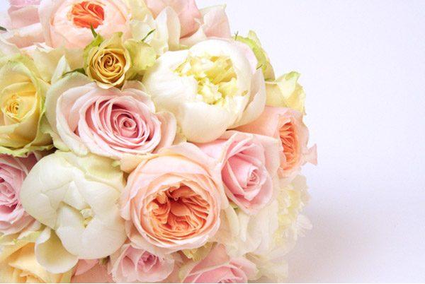 La flor que Romeo regaló a Julieta juliet_roses_9_600x402