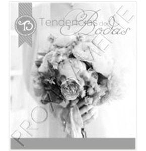 Un e-magazine que crea tendencia tendencias_5_290x300