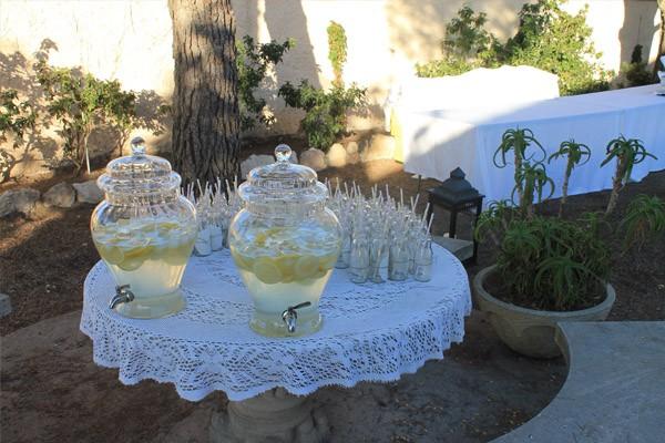 Noa & Álvaro: boda en el jardín noa_y_alvaro_25_600x400