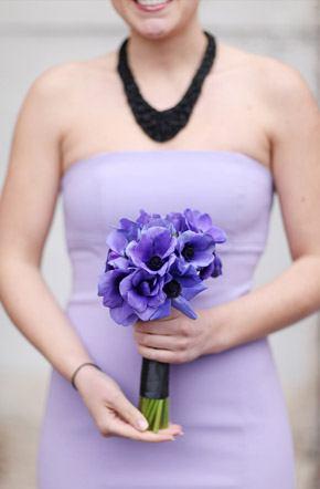 Arco iris de damas damas_arcoiris_12_290x442
