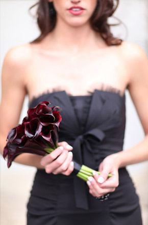 Arco iris de damas damas_arcoiris_13_290x442