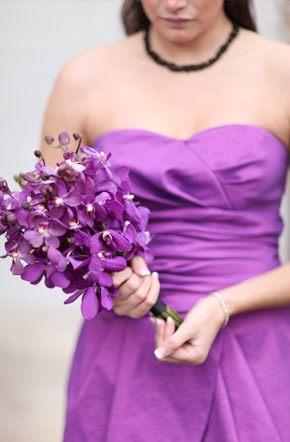 Arco iris de damas damas_arcoiris_16_290x442