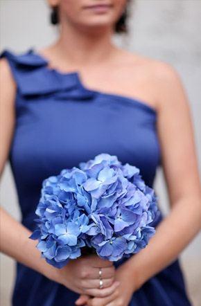 Arco iris de damas damas_arcoiris_5_290x442