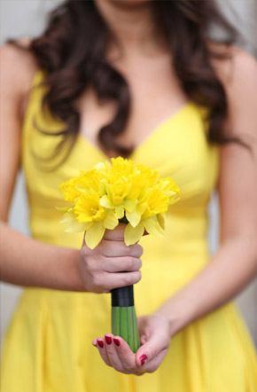Arco iris de damas damas_arcoiris_6_290x442