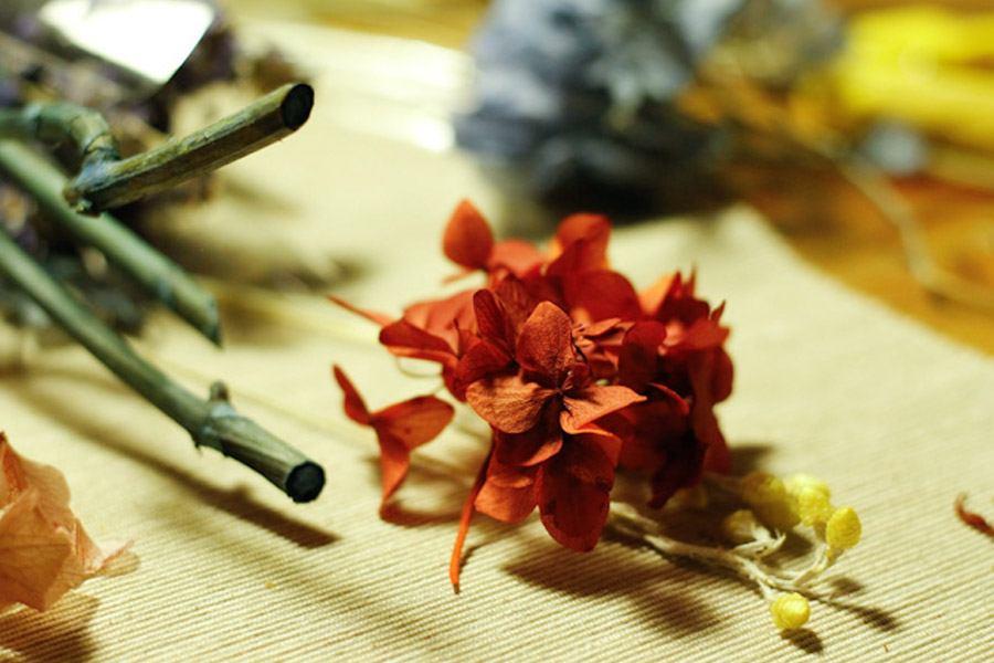 FLORISTAS POR UN DÍA magnolia_15_900x600