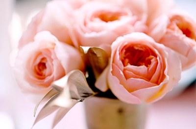LA VIE EN ROSE rosas_18_