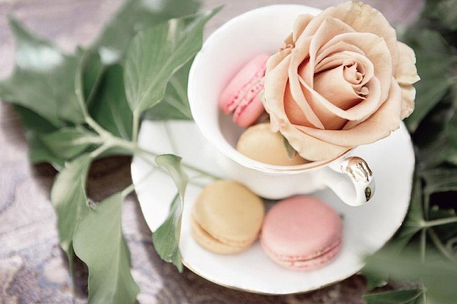 LA VIE EN ROSE rosas_3_900x600