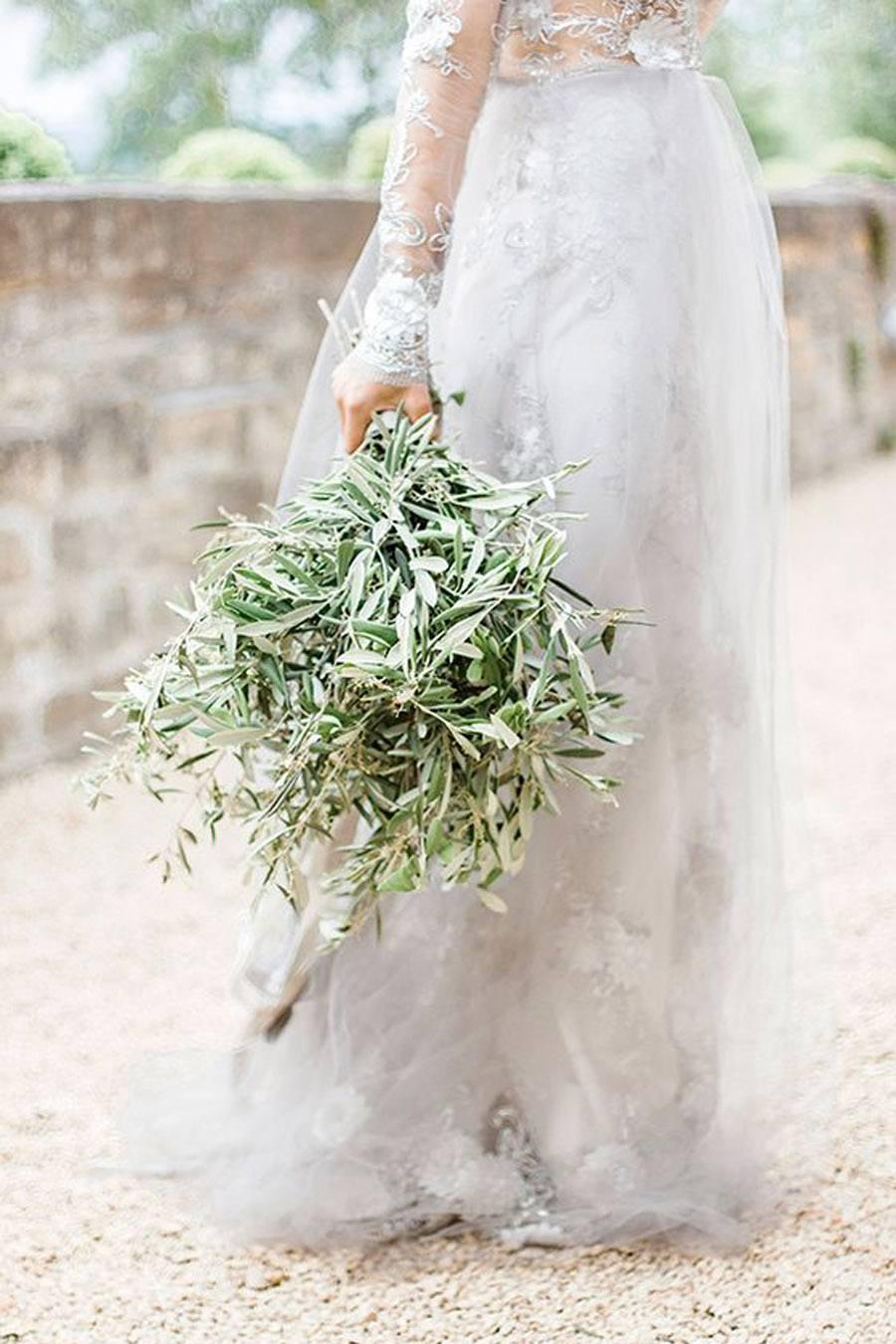 RAMOS DE OLIVO ramo-de-olivo