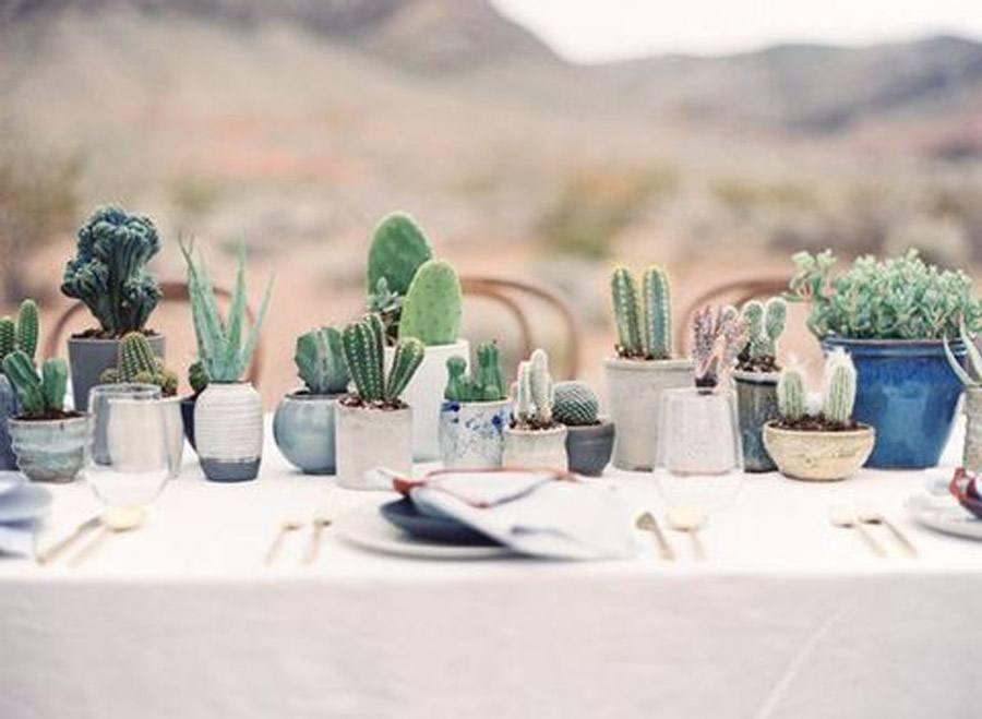 INSPIRACIÓN: CACTUS bodas-cactus