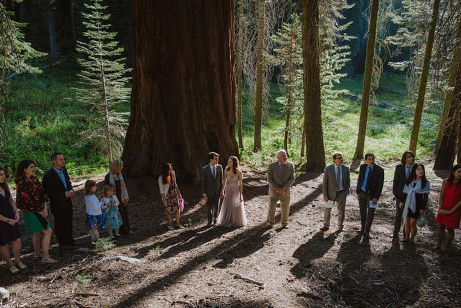 JULIA & JEFFREY: UNA SENCILLA BODA EN EL BOSQUE bodas-naturales