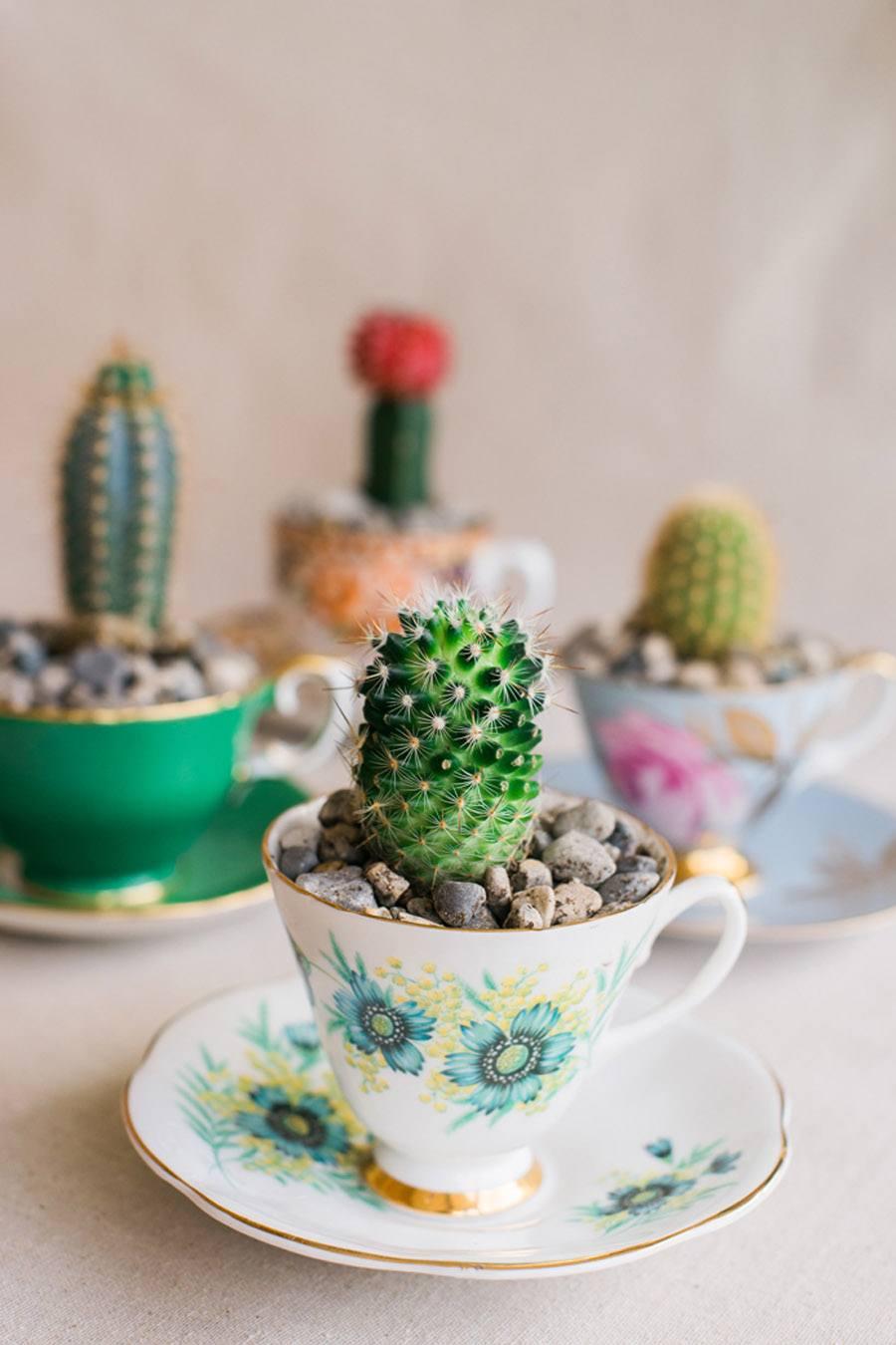 DIY MINI CACTUS EN TAZAS DE TÉ diy-boda-cactus