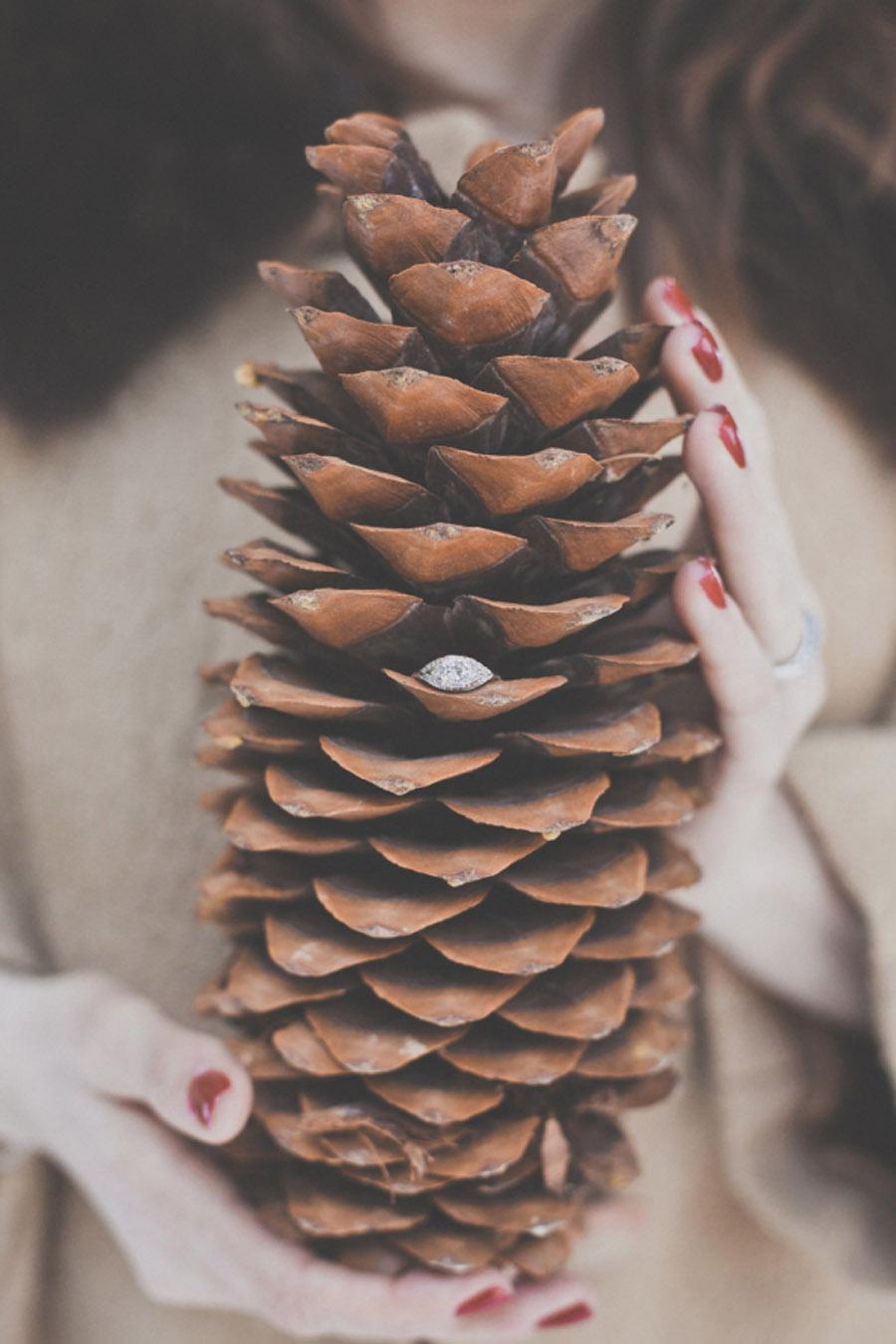UNA BODA EN NAVIDAD invierno-bodas
