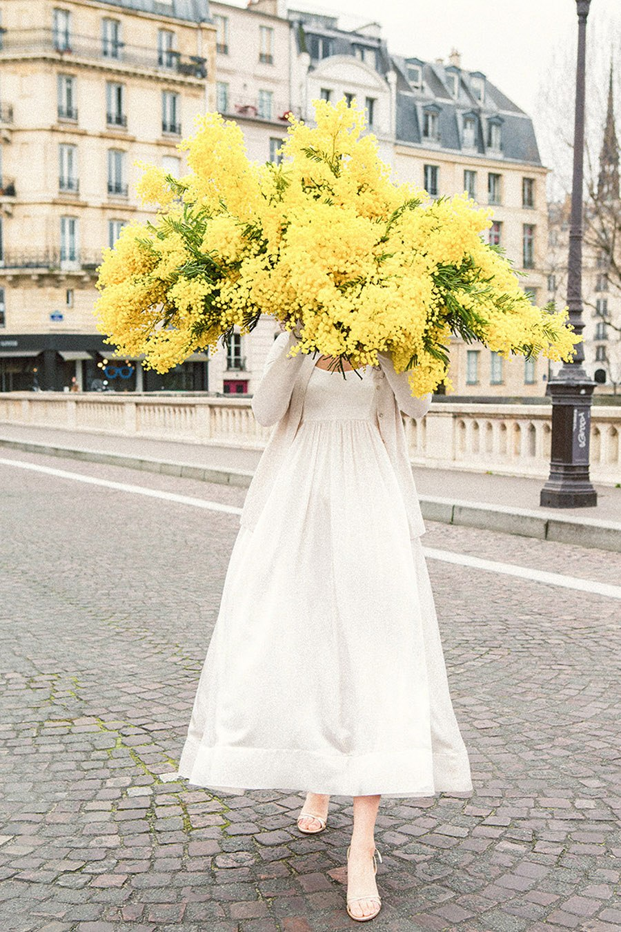 RAMOS DE NOVIA DE MIMOSAS mimosas-novia