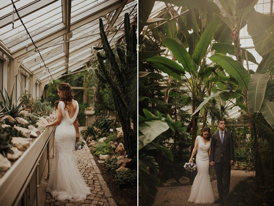 BODAS DE INVERNADERO bodas-en-invernadero