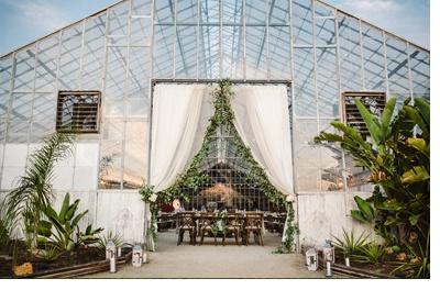 BODAS DE INVERNADERO invernadero-boda