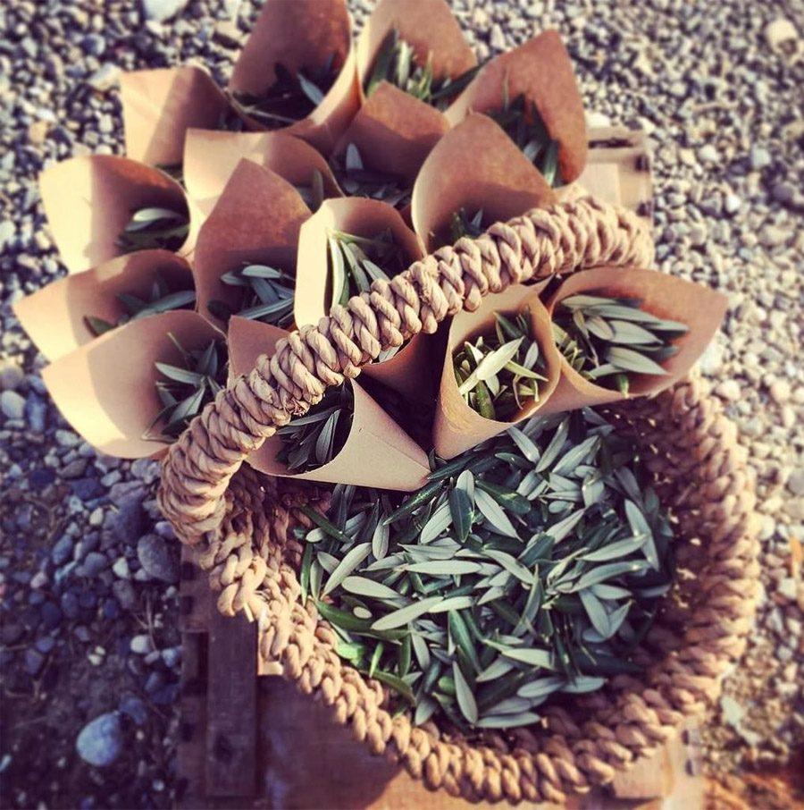 CONFETTI DE HOJAS DE OLIVO confetti-hojas-de-olivo