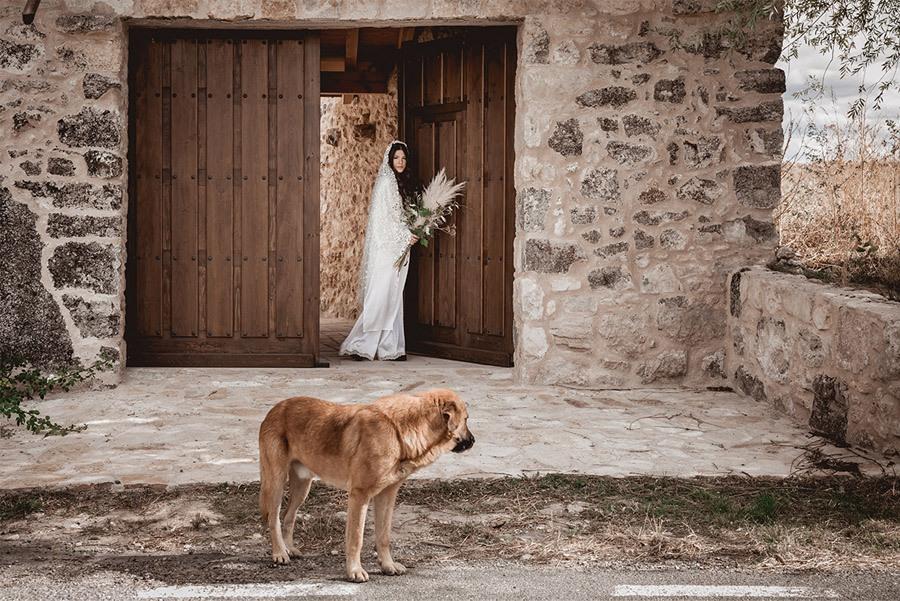 CAMPOS DE CASTILLA helena-mareque-editorial-novias