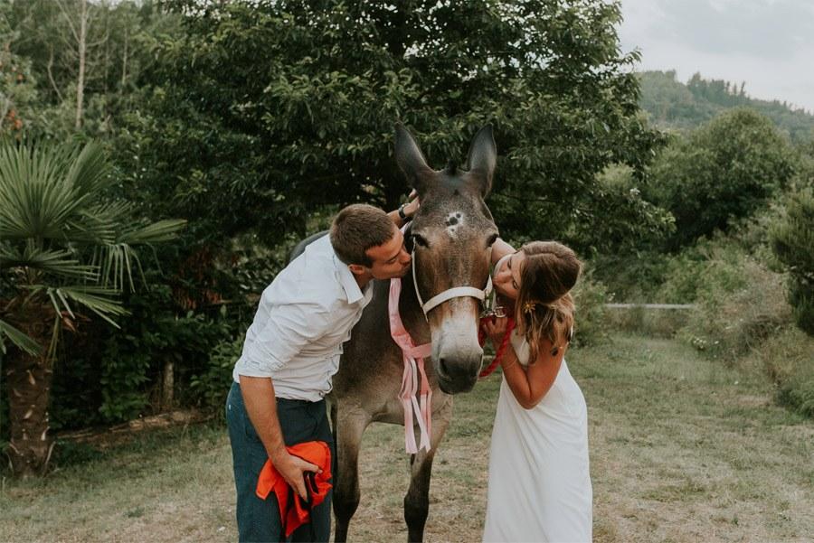 ELISABET, ALBERT Y SU DIVERTIDA BODA DE FIESTA MAYOR burro-boda