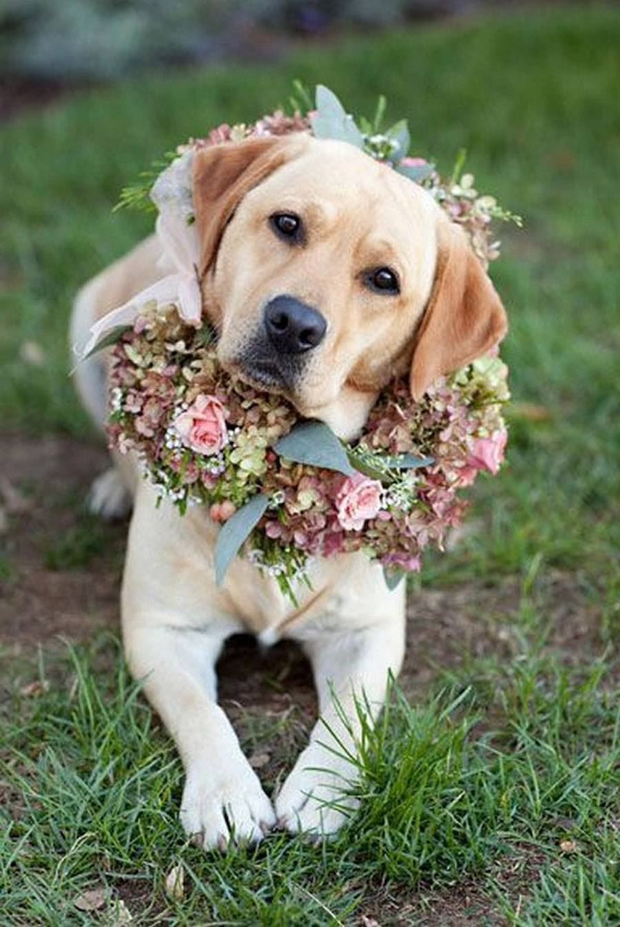 6 TENDENCIAS CLAVE PARA LAS BODAS DE 2020 tendencias-bodas