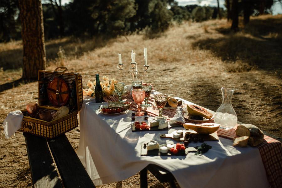 APUESTA POR UNA BODA PICNIC picnic-de-boda