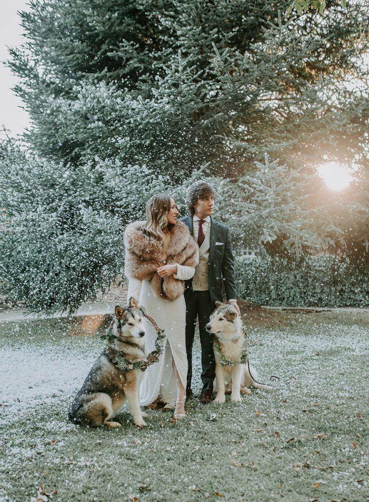 ¡OH MERRY LOVE! perro-novios-752x1024
