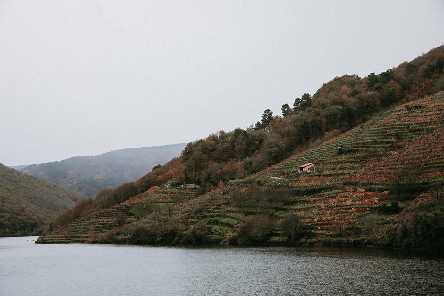 O NOSO CAMIÑO galicia