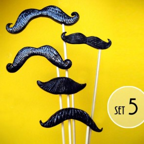 Set de 5 bigotes