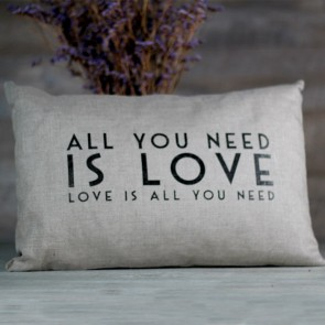 Cojin All you need is love
