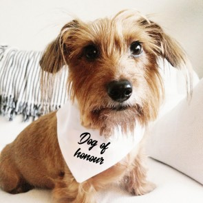 Bandana de boda para perro